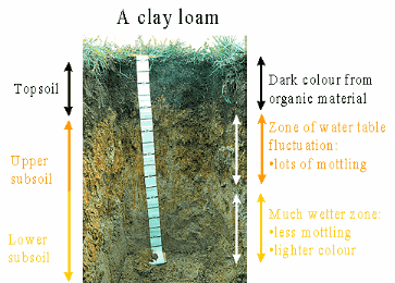 Soil Definitions and Properties