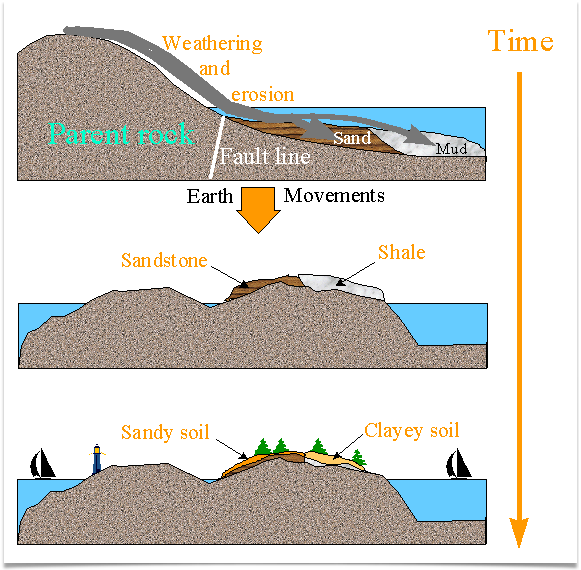 Soil formation parent material for Meaning of soil formation